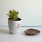 Arrow Planter
