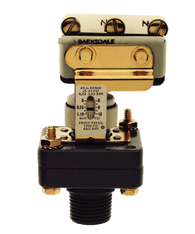 Barksdale Series E1S Dia-Seal Piston Pressure Switch, Stripped, Single Setpoint, 10 to 250 PSI, E1S-G250-BR-V-RD