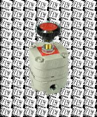 "Bellofram Type 10 Precision Pressure Regulator, 1/8"" NPT, 2-120 PSI, 960-013-000"