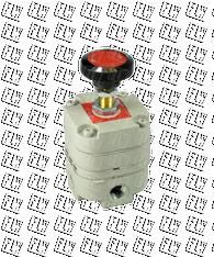 "Bellofram Type 10 Precision Pressure Regulator, 1/4"" NPT, 2-120 PSI, 960-015-000"