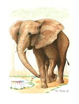 Nashville Zoo Elephant