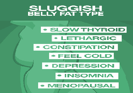 belly-fat-banner-sluggish.png