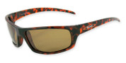 Hammerhead sunglasses 3812 with shiny dark tortoise frame and brown 1.0mm TAC polarized lenses