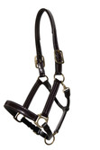 HAVANA / BROWN PATENT LEATHER HEADCOLLAR.