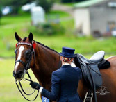 Mosaic , Bridle featuring Patent Leather Noseband. Photo courtesy Jess Stalling and LMG Photography.