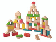 EverEarth 50pcs Building Blocks