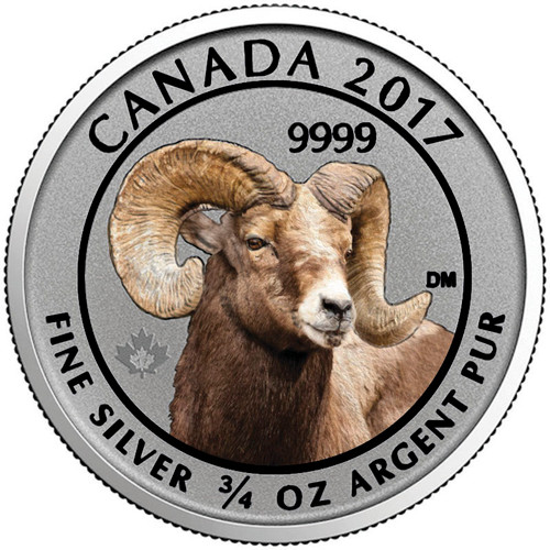 BIGHORN SHEEP - 3/4 oz Pure Silver Coin - Color Canada 2017