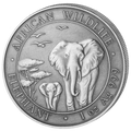 2015 Somalia~High Relief  Antique Finish African Wildlife ELEPHANT 1oz Silver Coin