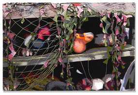 Duck Blind Gallery
