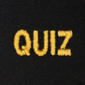 Quiz Embroidered Swiss Insert