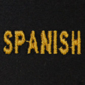 Spanish Embroidered Swiss Insert