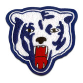 Bear Mascot 4