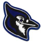 Blue Jay Mascot 5