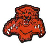 Panther Mascot / Cougar Mascot 4