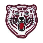 Tiger Mascot 3