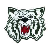 Wildcat Mascot 1