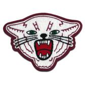 Wildcat Mascot 2