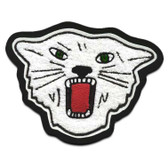 Wildcat Mascot 4