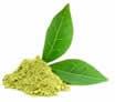 matcha-leaf.jpg
