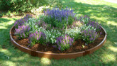 Raised Garden - 10.5 Feet Diameter Circle x 6 Inch High