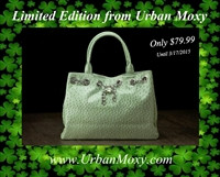 Limited Edition Mint Green Nicole Concealment Tote