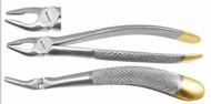 Max-Lite 7M Upper Premolars