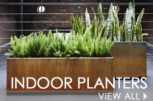 Browse our striking indoor planters!