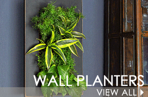 landing-page-wall-planters-dec2015-copy.png