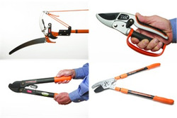 All this is waiting for you! pruning shears, pruning a tree, pruning a bush, pruning a bonsai, garden sheers, garden pruners, pruning scissors, gardening scissors, Best pruners, pruner, gardening shears, tree pruners, tree cutters, tree cutting tools, tree trimming tools, Hand Pruners, Ratchet Pruners