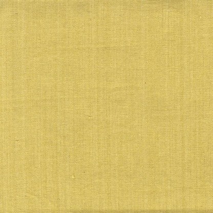 Solid Plain Weave Tea Towel 20in x 28in Dijon