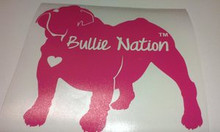 Bullie Nation Car Decal- Fuschia
