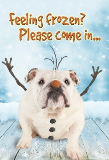 This Cute Frozen Bulldog Is Sure To Warm Any Guests Coming To Your Place.  Fits