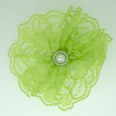 Lime Green Lace Flowers