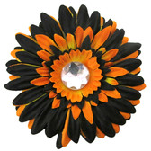 Black & Orange Gerber Daisy Flower Clip