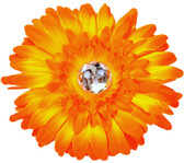 Orange Gerber Daisy Flower Clip