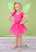 Hot Pink Rainbow Lined Dance Tutu
