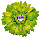 Lime Green Gerber Daisy Flower Clip