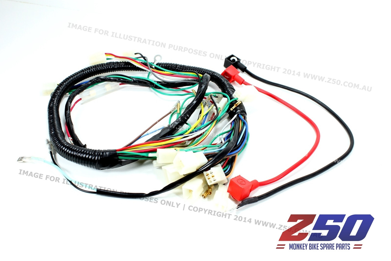 Aftermarket honda monkey z wire harness