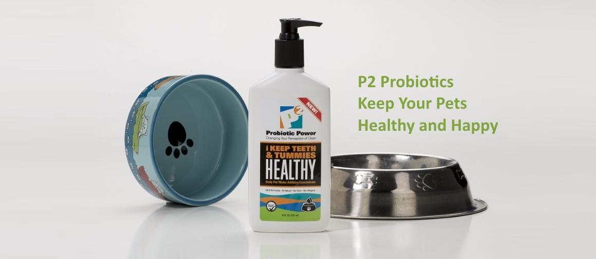 Probiotics keep pets healthy and happy