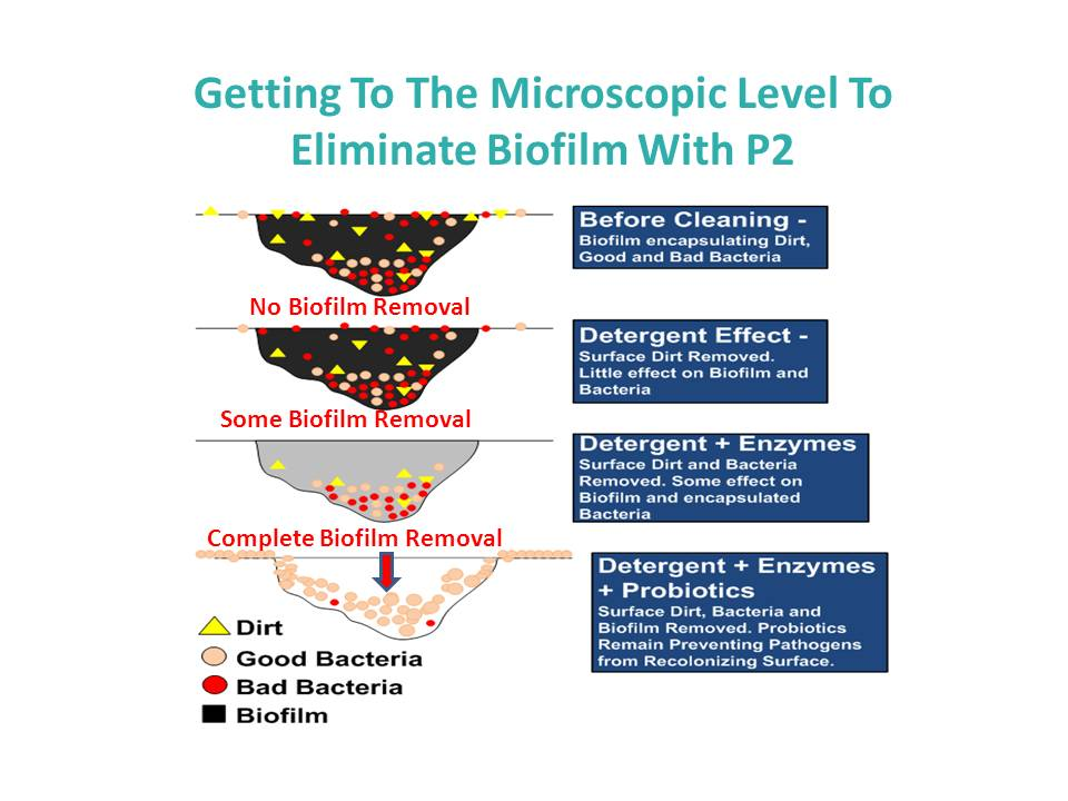 getting-to-the-microscopic-level-to-eliminate-biofilm.jpg
