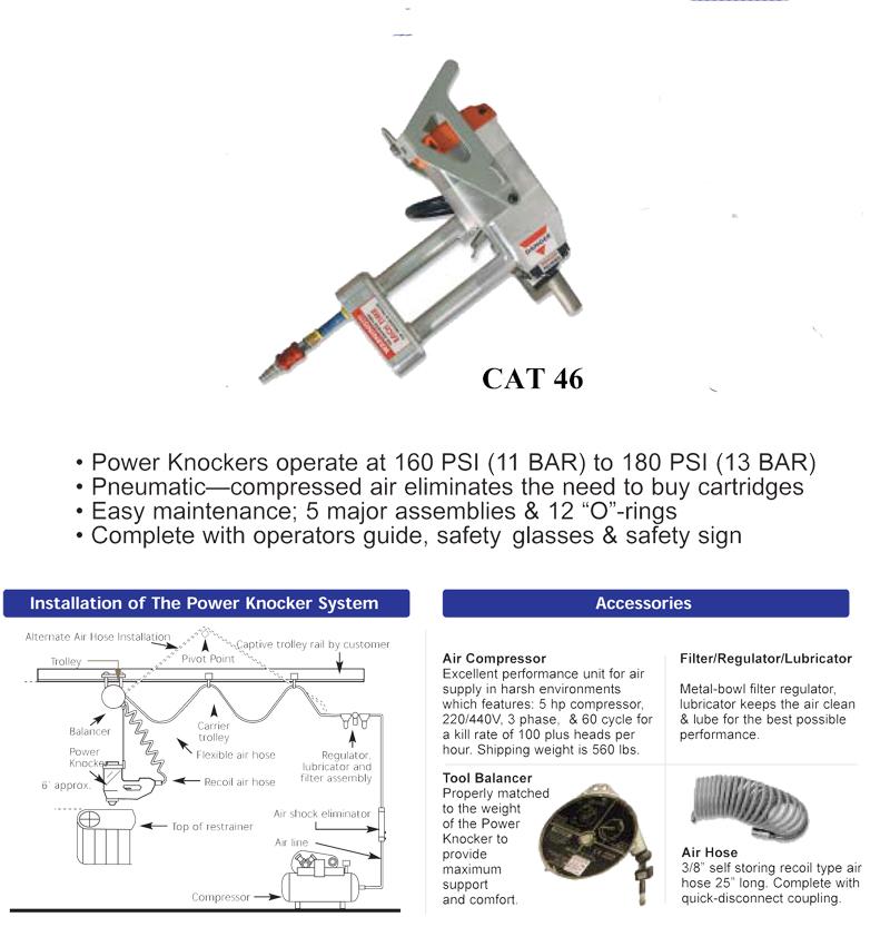 cat-46-mushroom.jpg