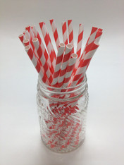 Deep Coral Stripe Paper Drinking Straws - made in USA