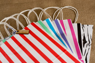 Gift or Shopping Bag - Medium Size - Heavy Weight Paper - Seven Styles