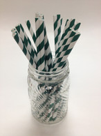 Evergreen Stripe Paper Drinking Straws - made in USA