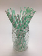 Mint Stripe Paper Drinking Straws - made in USA