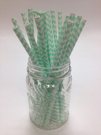 Mint Green Chevron Paper Drinking Straws - made in USA