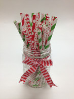Christmas Holiday Mix Red and Green Paper Drinking Straws - made in USA