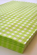Set of 100 - Lime Gingham Flat Paper Merchandise Bags Combination Pack - 8.5 x 11 Inches and 6.25 x 9.25 Inches - Gifts, Packaging, Retail