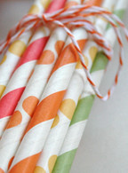 Paper Drinking Straws - Citrus Color Combination Pack - made in USA