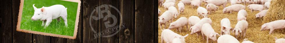 Swine Supply Store